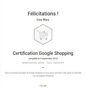 Certification Google Shopping